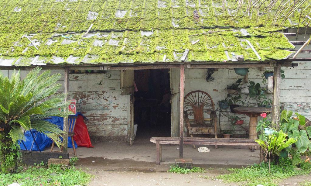 Haus mit Moosdach