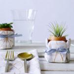 Osterdeko mit Sukkulenten in frischen Farben - maritimer Look
